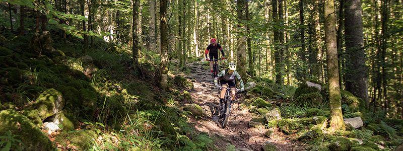 Mountainbike met schijfremmen