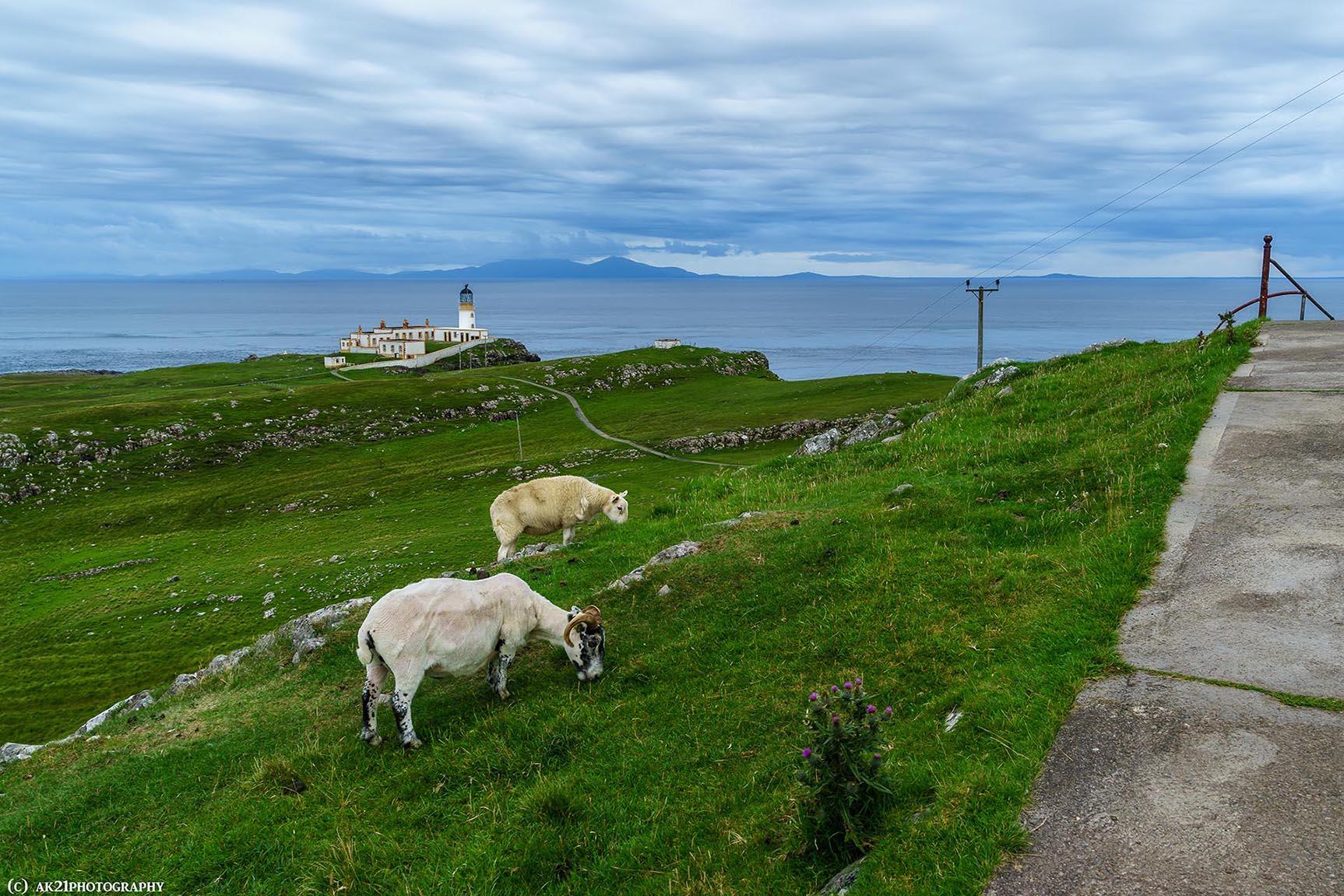 Esquivando obstáculos en Escocia