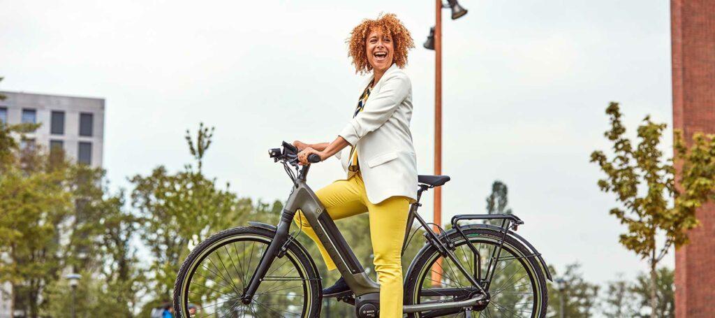 elektrische fiets accu