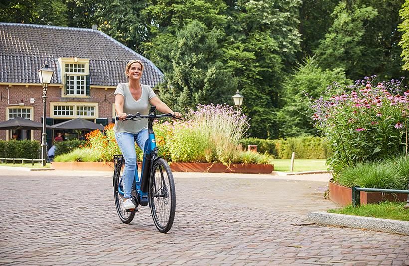 Vet verbranding e-bike