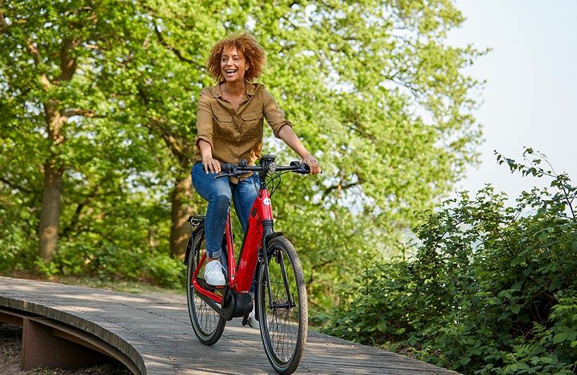 Elektrische comfortabele fiets Ultimate C8+ hmb
