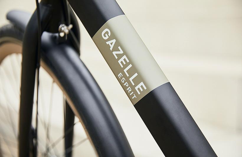 Gazelle Esprit Fahrradrahmen Schwarz